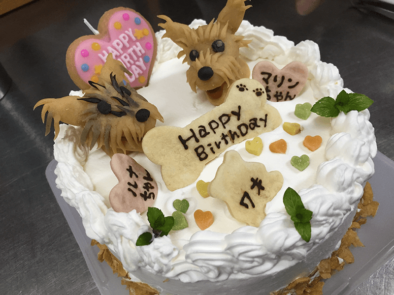 3Dワンコケーキ